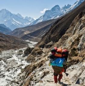 Heavy load, porter, Gokyo, Dudh Kosi, Milky River, Khumbu region, Nepal Himalaya, Sagarmatha National Park