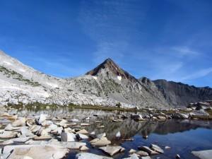 Virginia Peak, SHR, 2011