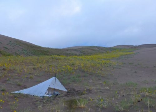 tarp-sand-dunes