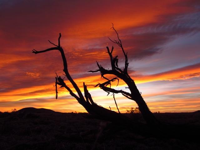 Arizona Trail Sunset
