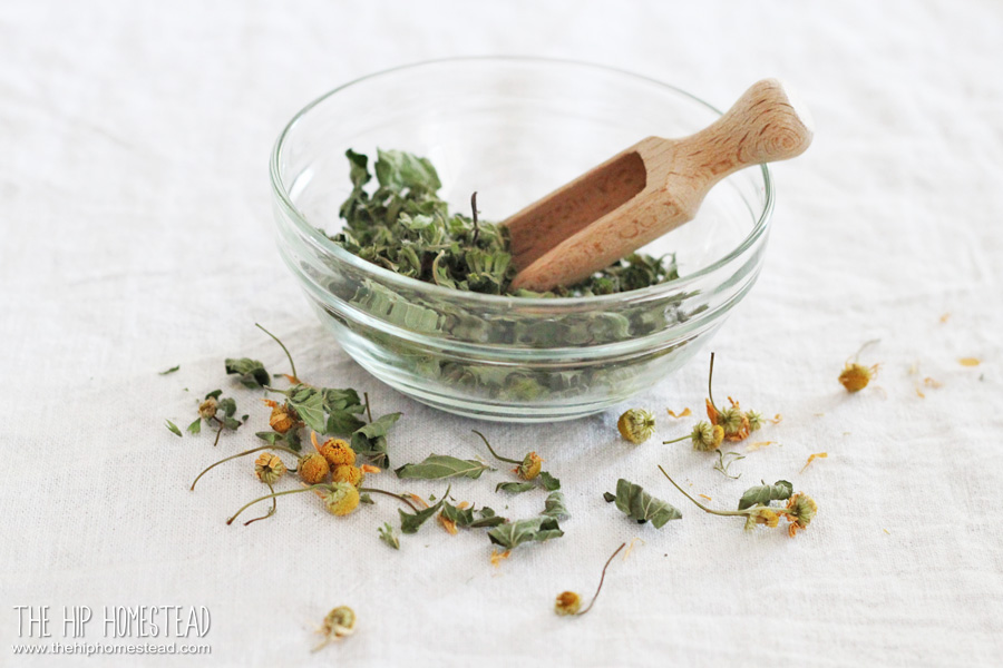 Chill Out Herbal Tea Dry Lemon Balm The Hip Homestead