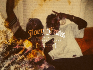 Joey fatts ill street blues mixtape