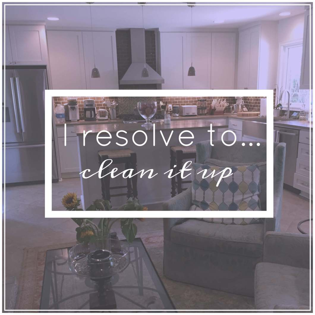I resolve to remove toxins from my home! // www.thehisfor.com