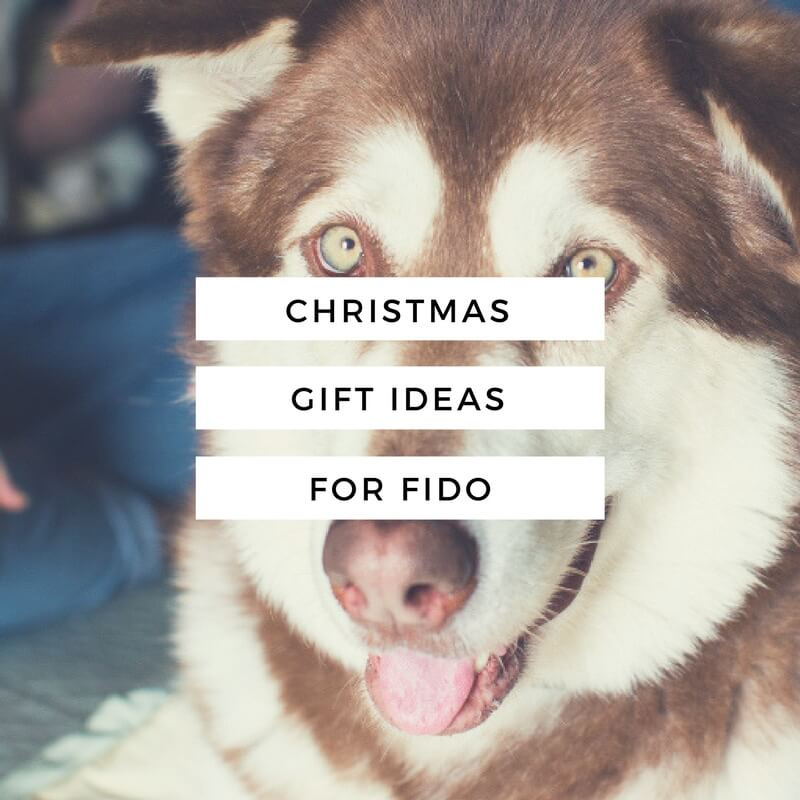 The H is For... Holiday Shop // Christmas Gift Ideas For Fido // www.thehisfor.com