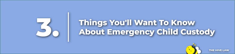 Emergency Petition for Custody - How To File For Emergency Custody - how to get an emergency custody order