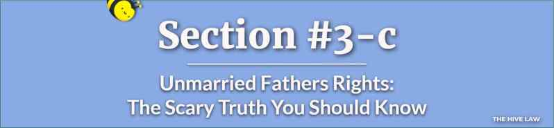Unmarried Fathers Right - Child Custody Rights for Fathers - Fathers Rights - Fathers Custody Right