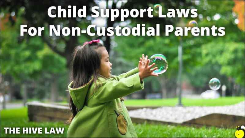 georgia child support laws for non custodial parents - georgia child support laws - child support law in georgia