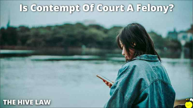 Is Contempt Of Court A Felony - Does Contempt Of Court Go On Your Record - Contempt Of Court Felony - Contempt Of Court Charge