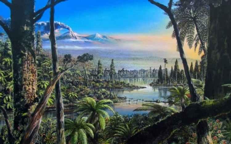 Antarctica was a rainforest