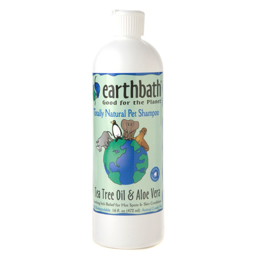 tea tree oil and aloe shampoo