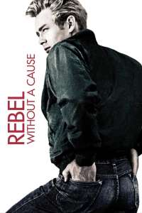 "Poster for the movie ""Rebel Without a Cause"""