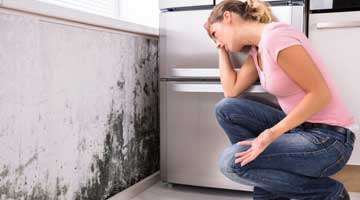 how to remove mold and mildew from shower