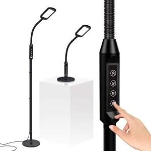 Gooseneck Floor & Desk Lamp for reading