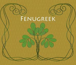 The Spice Series: Fenugreek