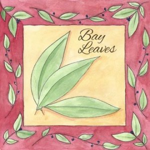 How to Grow Bay Leaves
