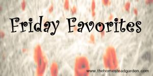 Friday Favorites #4