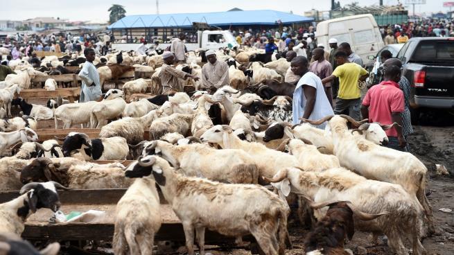Eid-el-Kabir: Akinkuolie, Adeyanju calls for prayers