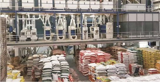 3,500 Ondo rice farmers for CBN dry season farming