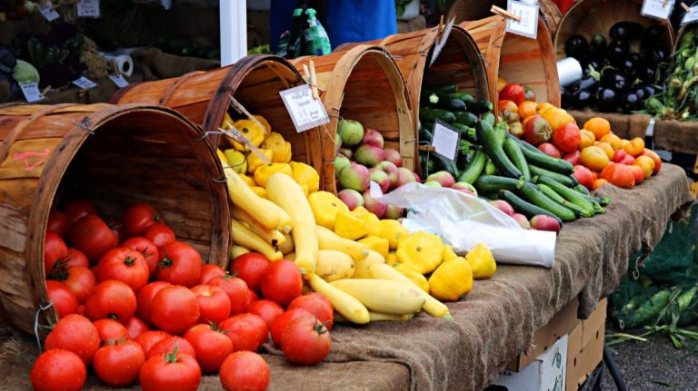 Enhancing Food Production In Ondo state