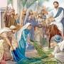 Covid-19: Christians celebrate low key Palm Sunday