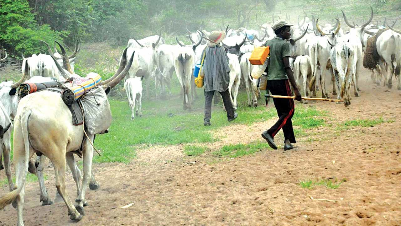 Stop attributing all attacks to herders-PPRO