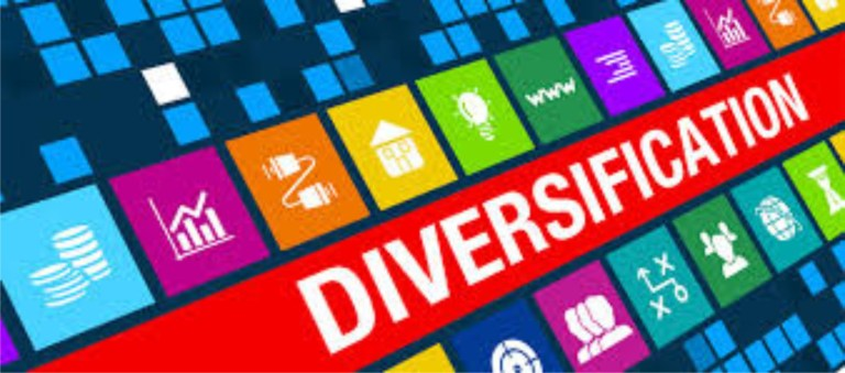Diversification, key to economic outlook'