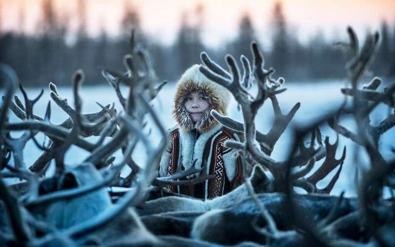 Anthrax spores would have dispersed throughout the area and affected reindeer