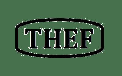 Waarom staartextensions van Thef?