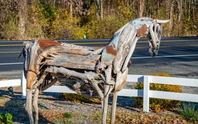 WARNING – This horse may kill you!
