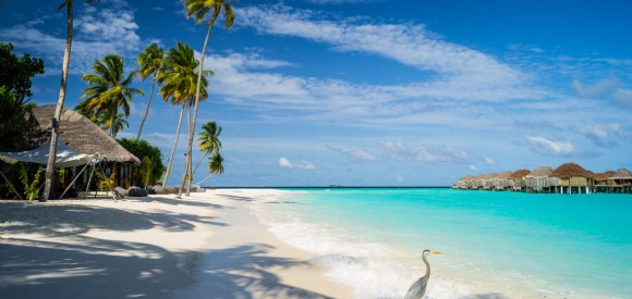 Image result for Maldives , best honeymoon destinations in the world