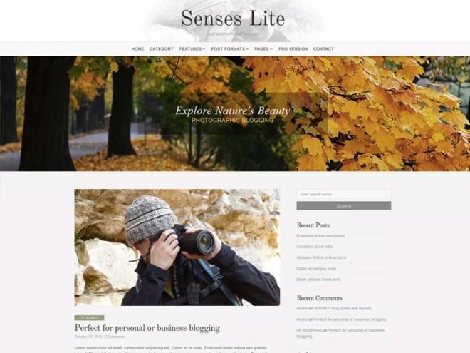 business blogging theme