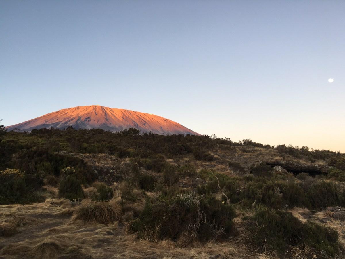 Hakuna matata: 7 days on Kilimanjaro