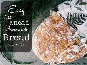 Easy, No-Knead, Homemade Bread
