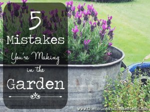5 Mistakes You're Making in the Garden