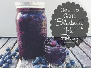 How to Can Blueberry Pie Filling