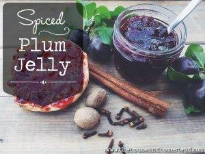 Spiced Plum Jelly