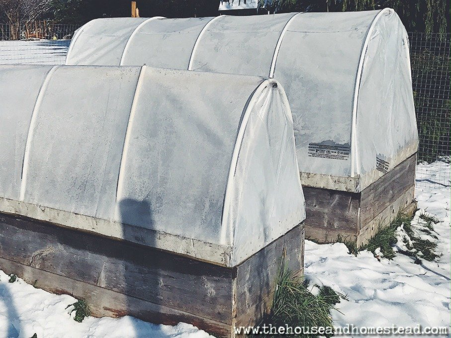 A hoop house is like a portable greenhouse for your outdoor garden. It can help you extend your growing season and help shelter your winter garden from snow and ice. You can make your own hoop house with simple building materials in a single afternoon. Learn how to build a hoop house the quick and easy way with this DIY hoop house project tutorial.