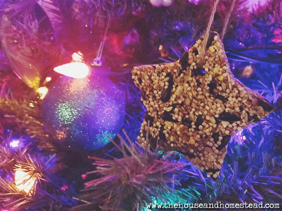These quick and easy DIY birdseed ornaments make a perfect handmade Christmas gift for friends, family, neighbours, teachers or even just for the birds in your own backyard. And they can be made with simple, supermarket ingredients for just a few cents a piece! A fast and frugal gift idea for everyone on your list!
