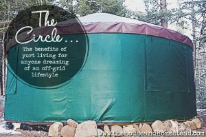 The Circle: The Benefits of Yurt Living for Anyone Dreaming of an Off-Grid Lifestyle