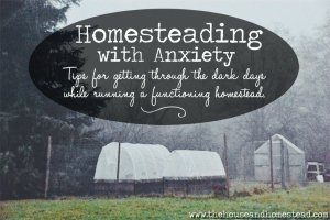 Homesteading With Anxiety: Tips For Getting Through the Dark Days While Running a Functioning Homestead