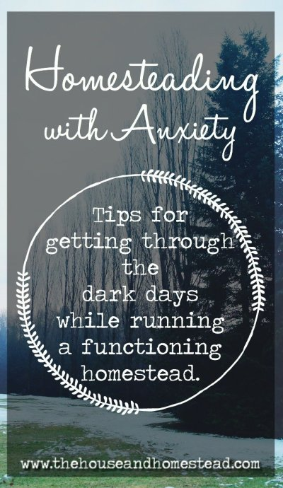 Homesteading is hard work a the best of times, and anxiety and depression make life difficult for everyone they touch. But trying to homestead with anxiety can feel downright impossible. Luckily there is a light at the end of the tunnel. Here are some pieces of tried and tested advice to help you push through and deal with anxiety and depression on the homestead. #homesteading #anxiety #depression