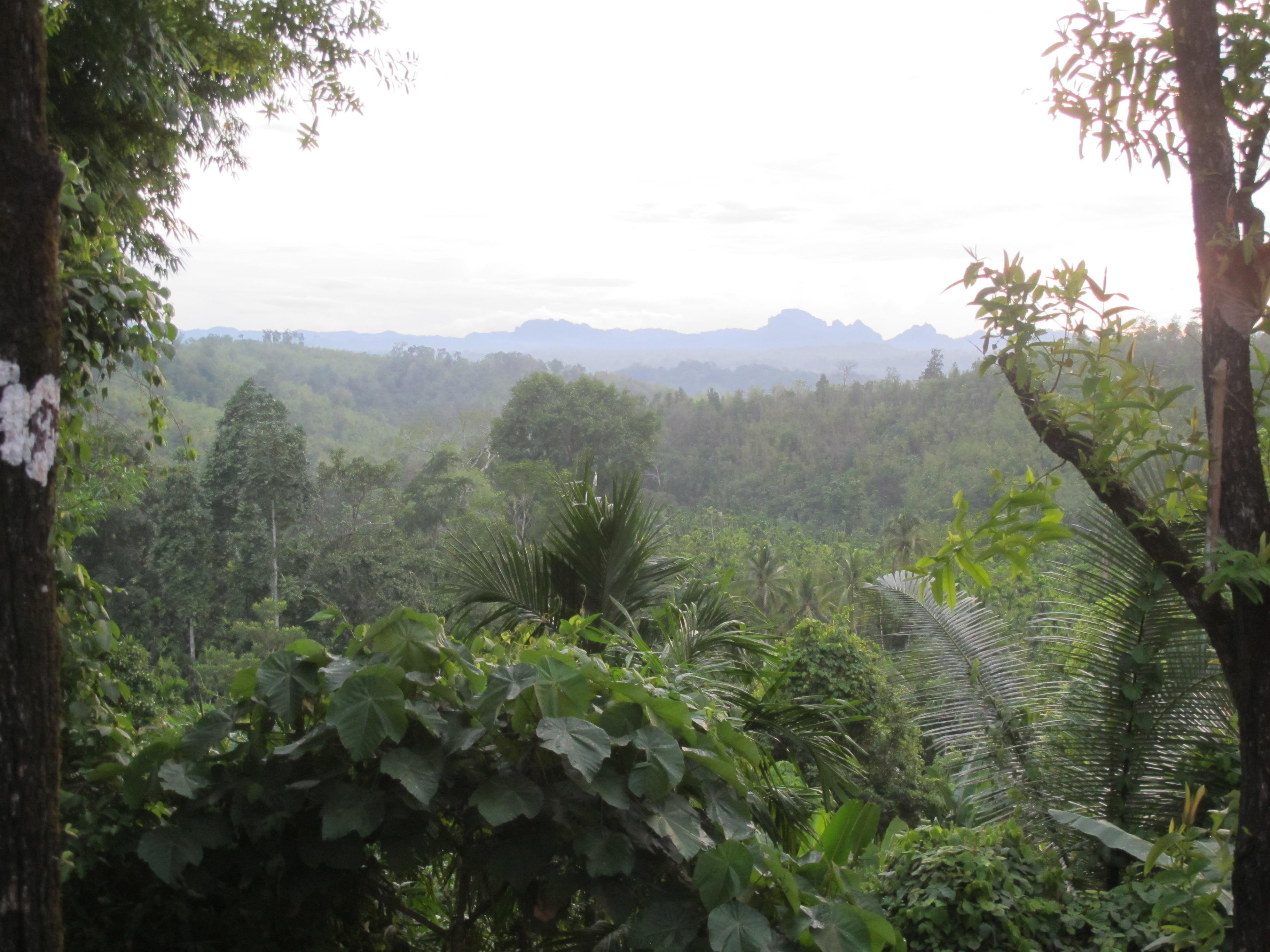 ltk-beautiful-view.jpg