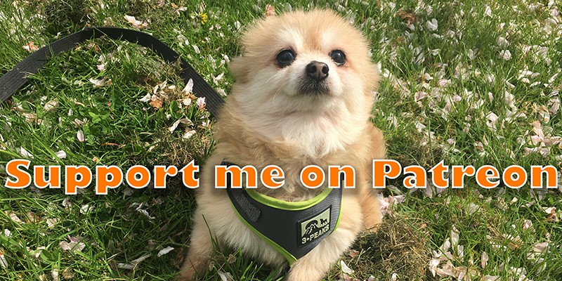 Help Support The House of Animals Via Patreon
