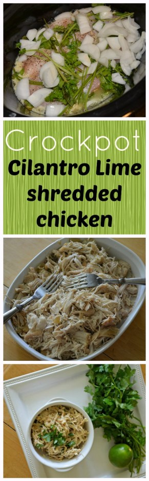 Completely Addictive! Crockpot Cilantro Lime shredded chicken. And the tricks to keep chicken moist. | the House of Hendrix