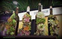 Wine bottle art with succulents