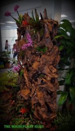 Living wall made of wood