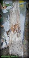 Piece of barn wood