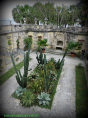 Looking down on the courtyard