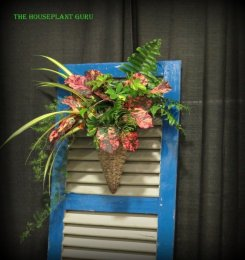 Using tropical foliage to make an arrangement