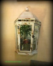 Very cool wall terrarium